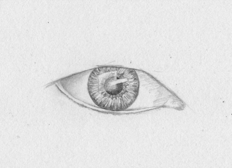 how to draw eyes step 7